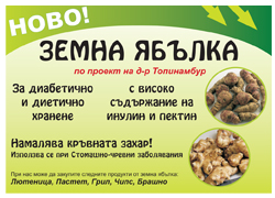 Brochure for the product (Jerusalem artichokes)